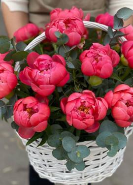 Basket of peonies Dnipro