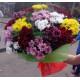 Chrysantemum Assorti