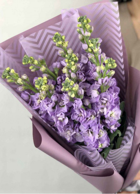 Bouquet of mix mattiolla