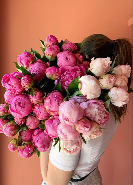 Pink Peonies Dnipro