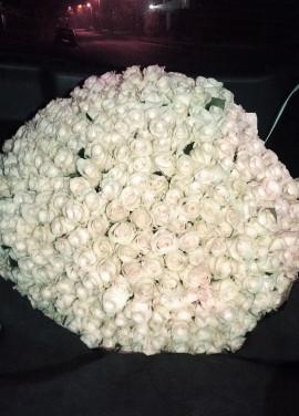 333 white roses