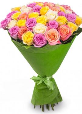 51 multicolored roses