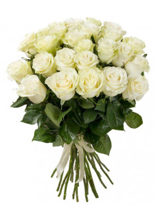 Avalanche white roses
