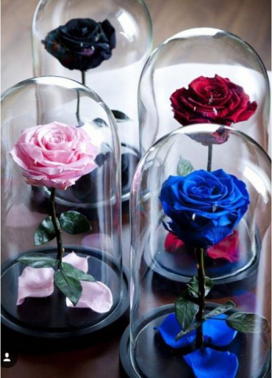 Долгосвежие цветы