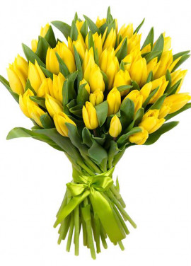 Bouquet of 51 yellow tulips